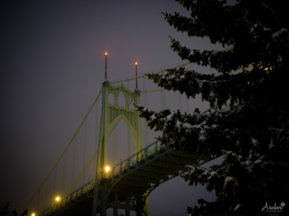 St_Johns_Bridge_Snow0005.jpg