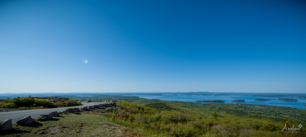 Along the road to Cadillac Mountain