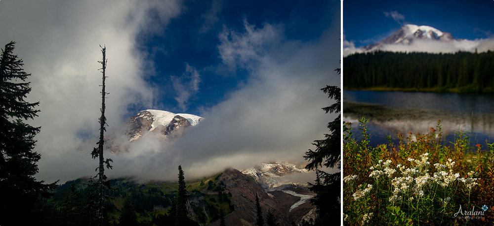 Mt_Rainier_TripReport007.jpg