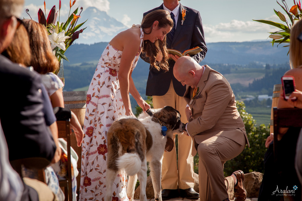 Crag_Rats_Hut_Wedding0013.jpg