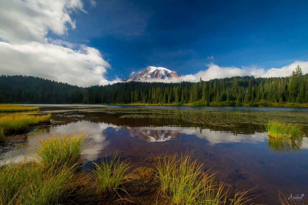 Reflection Lake - Mt. Rainier National Park, Washington