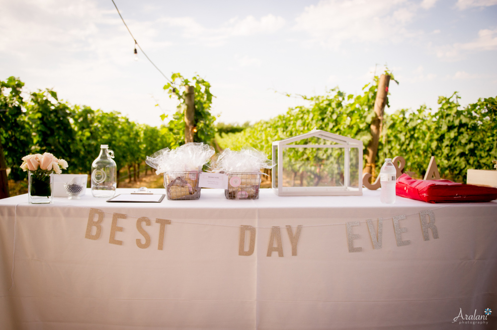 Alloro_Vinyard_Wedding0004.jpg