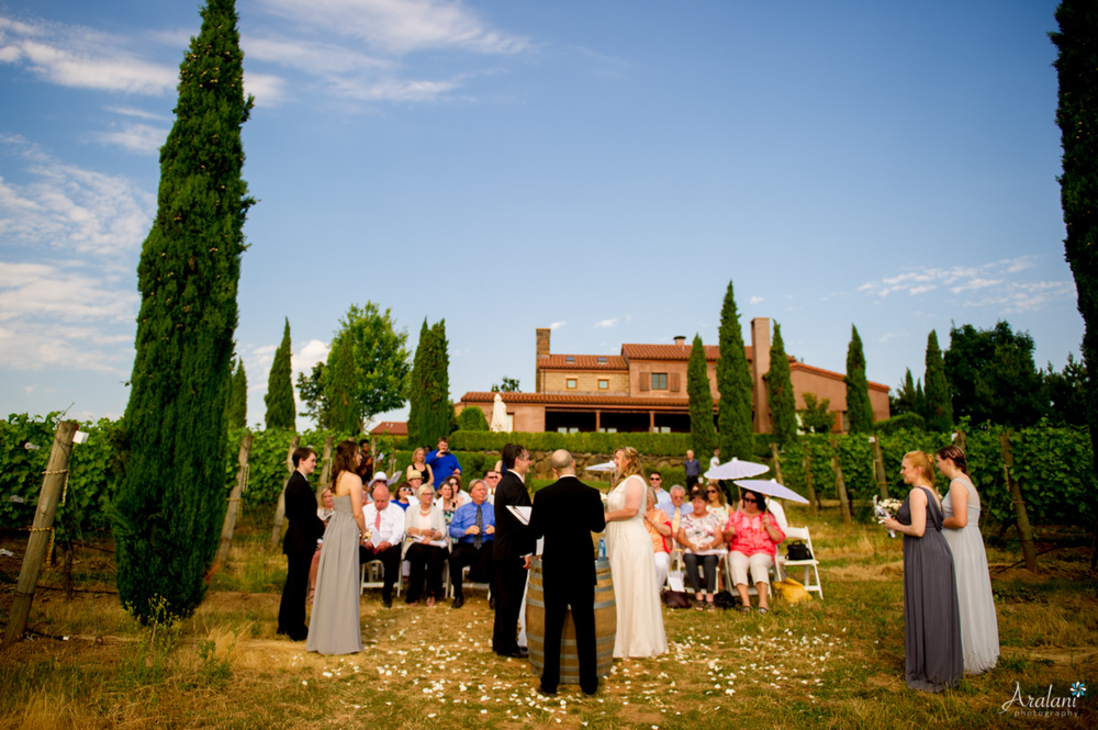 Alloro_Vinyard_Wedding0014.jpg