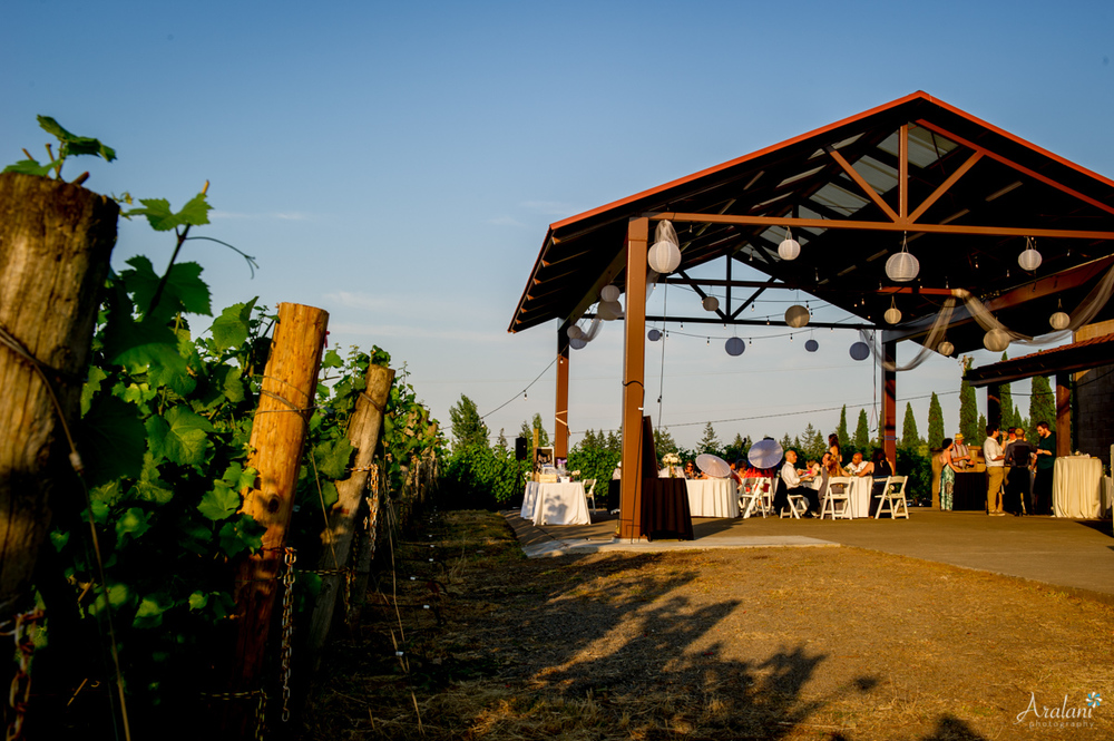 Alloro_Vinyard_Wedding0023.jpg