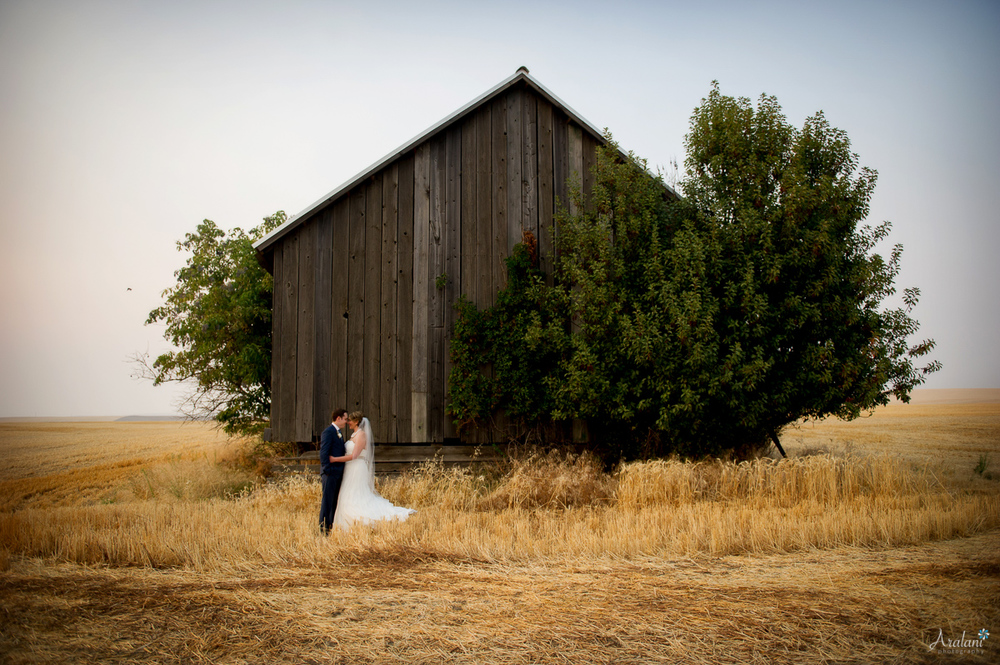 Abeja Winery and Inn Wedding