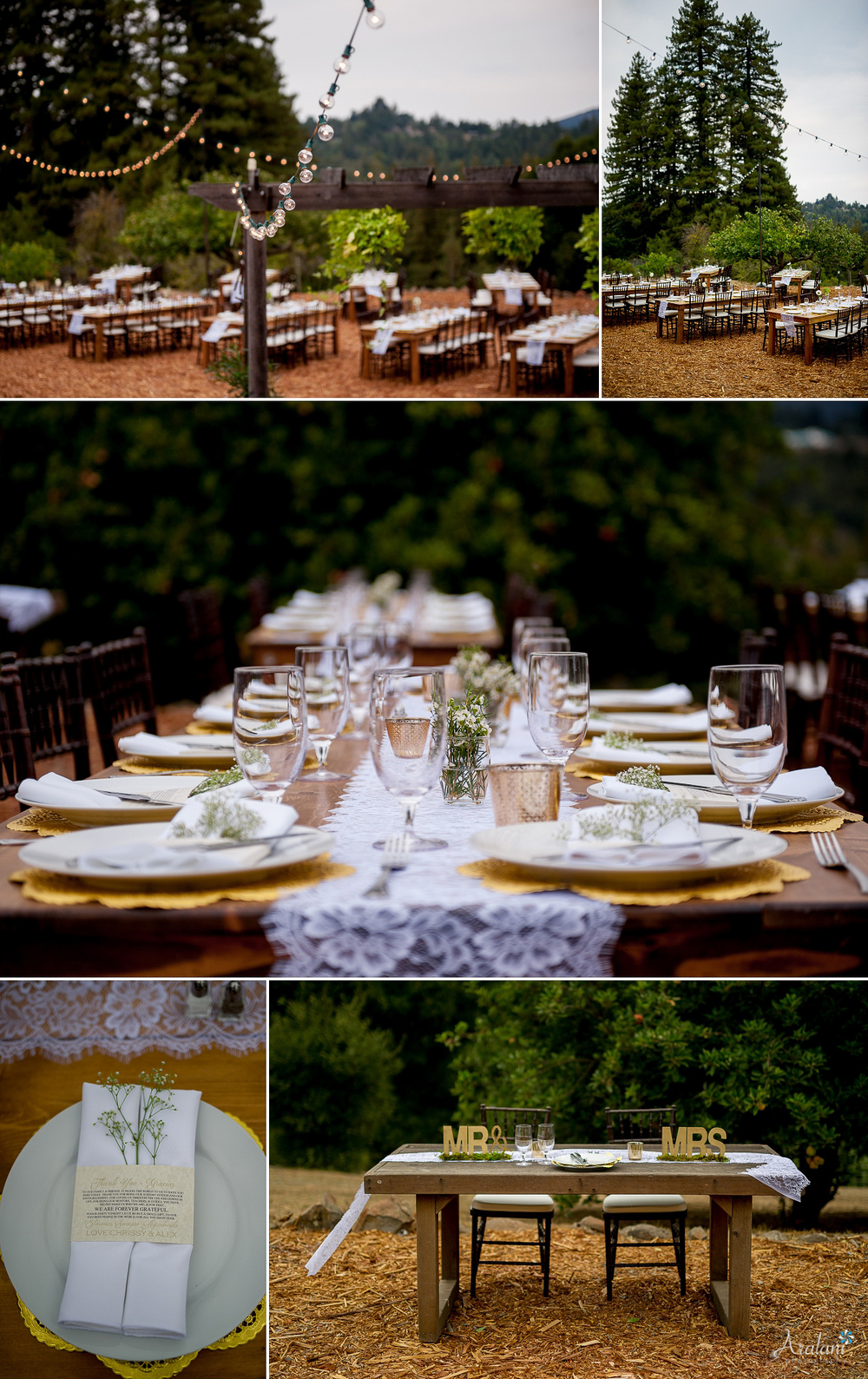 Santa_Cruz_Mountains_Wedding0033.jpg