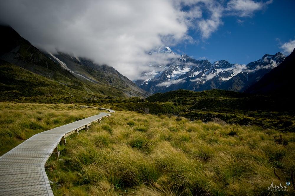 New_Zealand_Roadtrip_0022.jpg