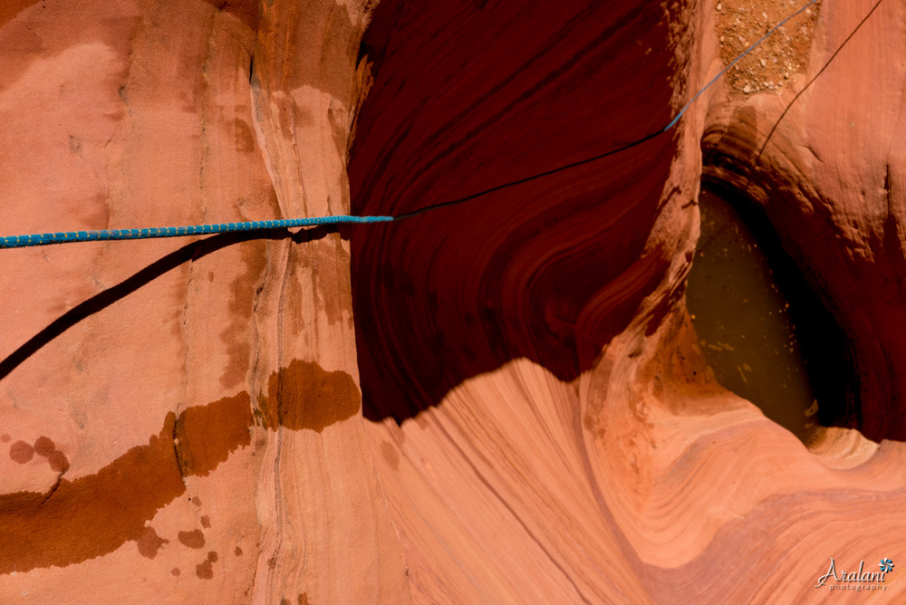 Zion_Canyoneering_Adventure014.jpg