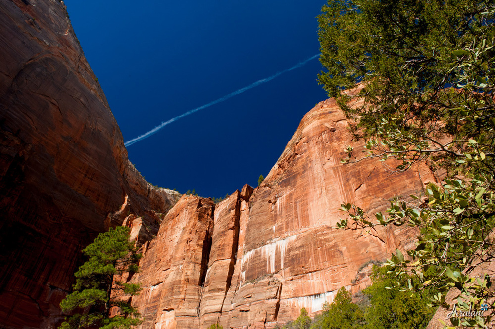 Zion_Canyoneering_Adventure043.jpg