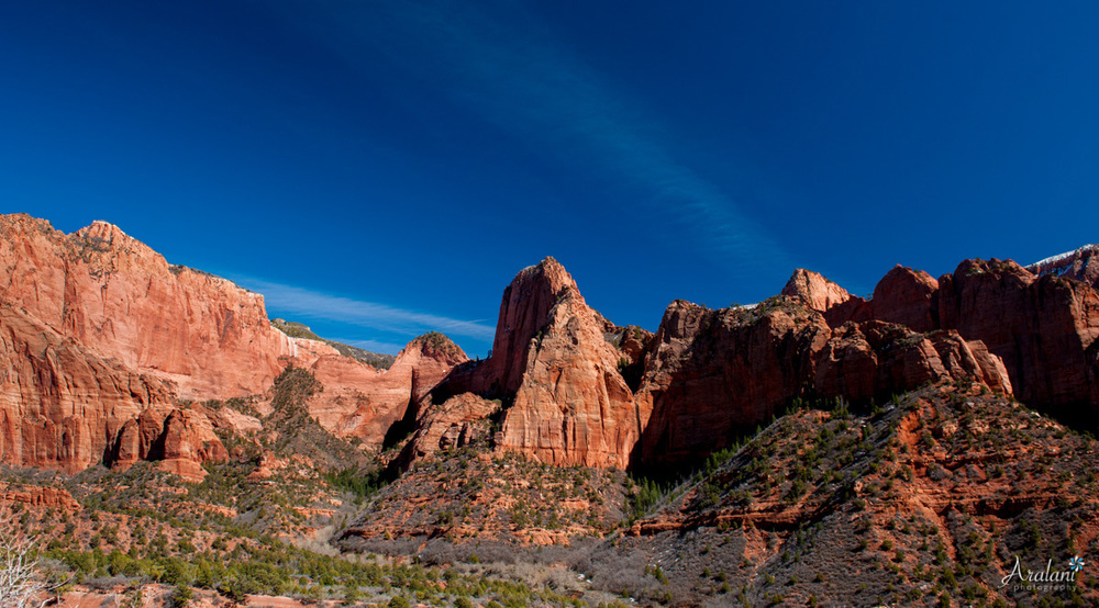Zion_Canyoneering_Adventure046.jpg