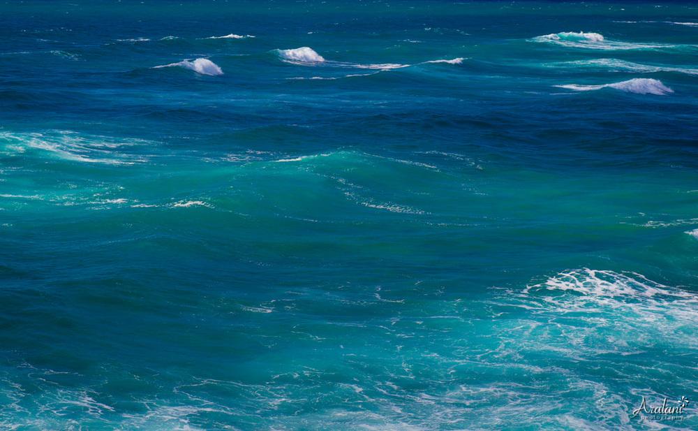 Kauai_Trip_Report0012.jpg
