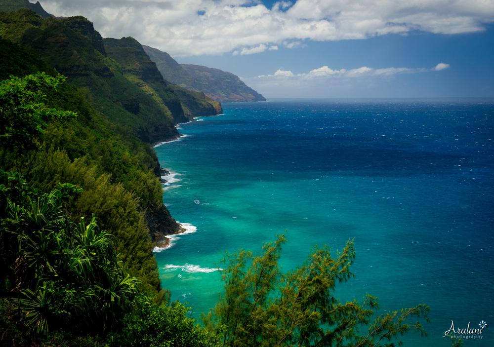 Kauai_Trip_Report0016.jpg