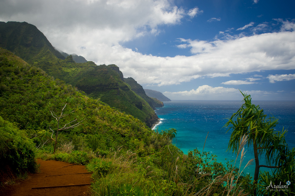 Kauai_Trip_Report0019.jpg