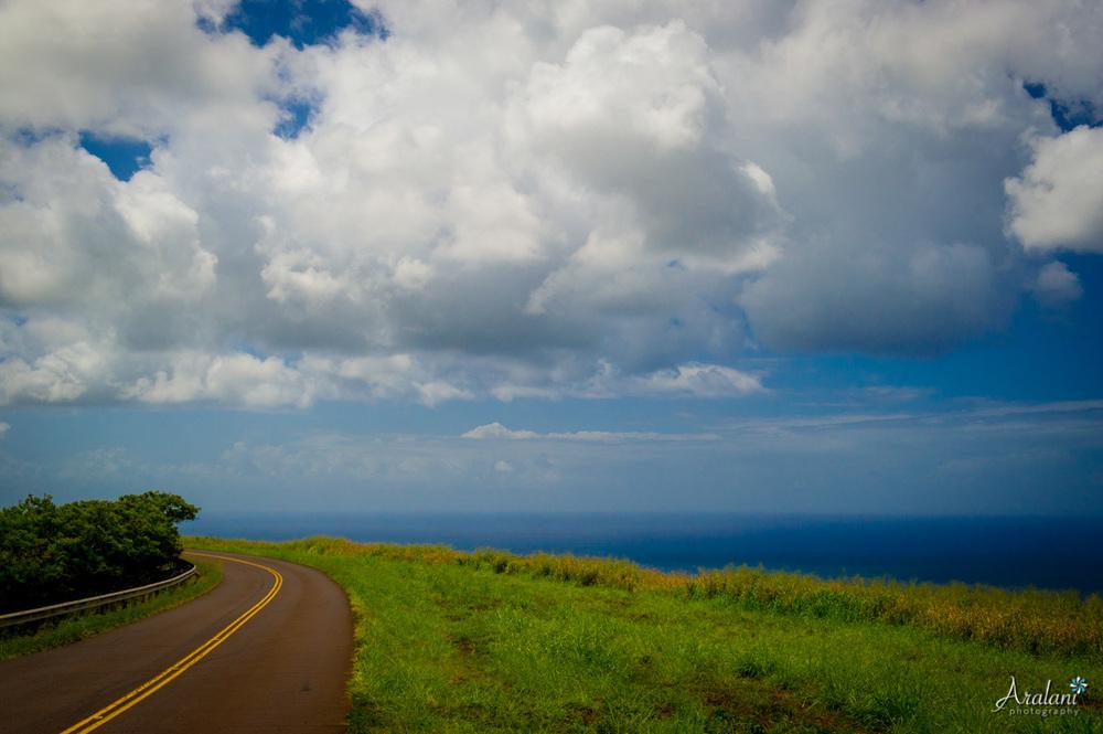 Kauai_Trip_Report0022.jpg