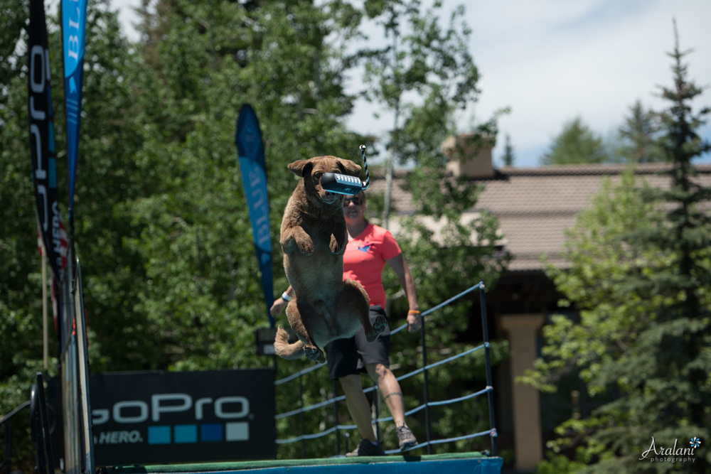 GoPro_MountainGames_DockDogs004.jpg