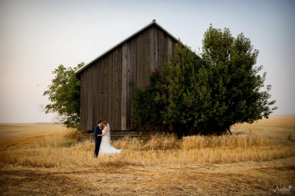 Wedding Portfolio.jpg