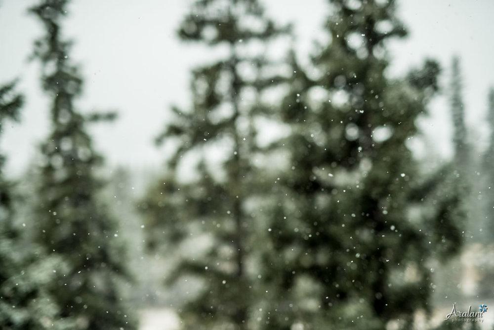 Banff030.jpg