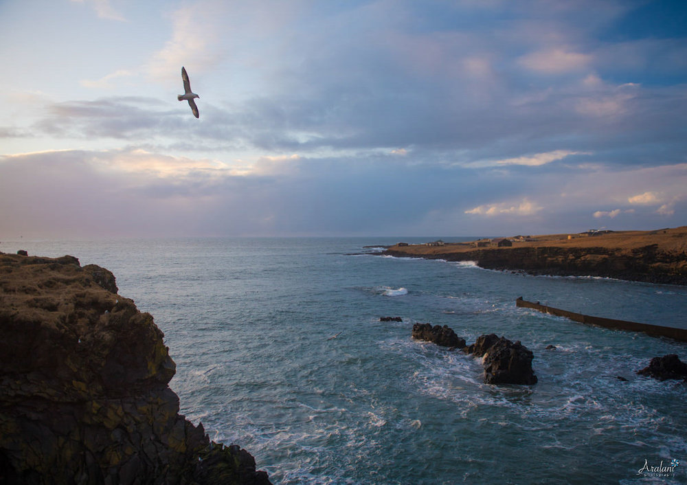Iceland_Aralani0024.jpg