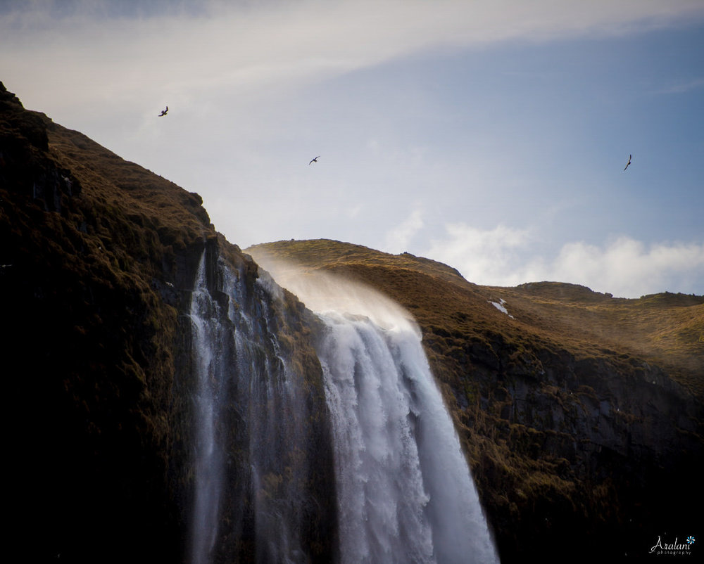 Iceland_Aralani0036.jpg