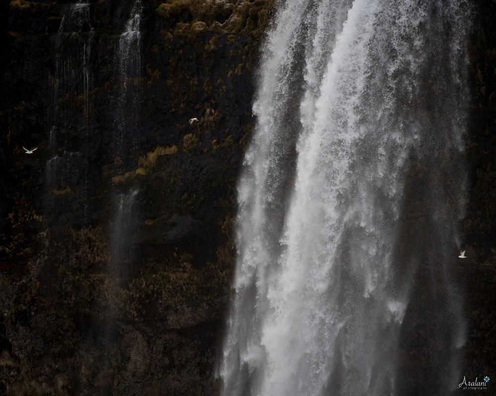 Iceland_Aralani0040.jpg