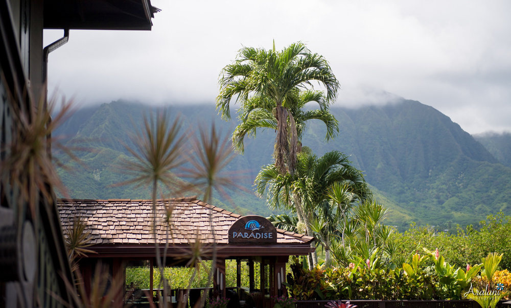 Kualoa_Ranch_Wedding_Oahu0001.jpg