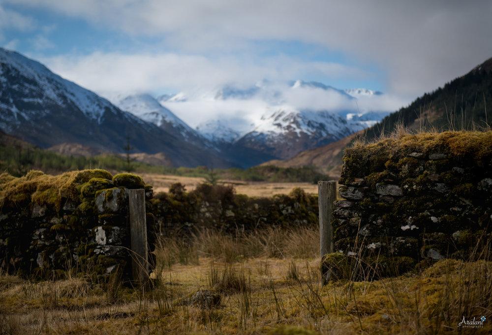 Aralani_Scotland_0005.jpg