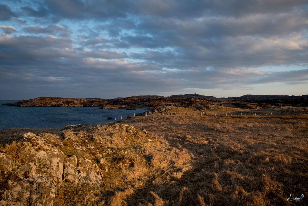 Aralani_Scotland_0048.jpg