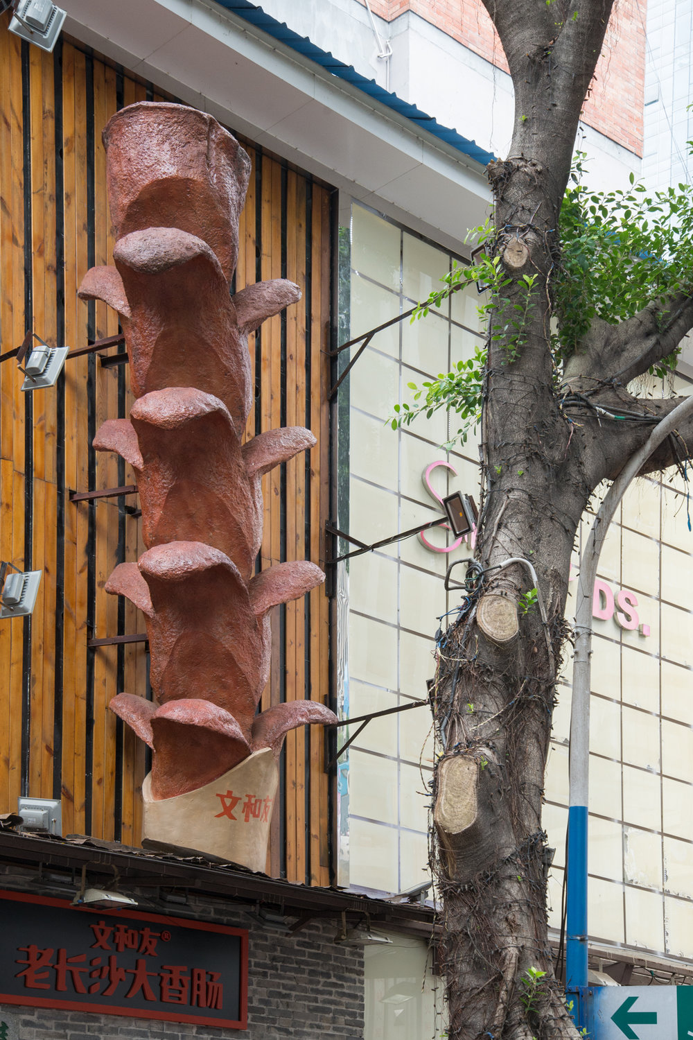 Noodle Shop Sign and Tree