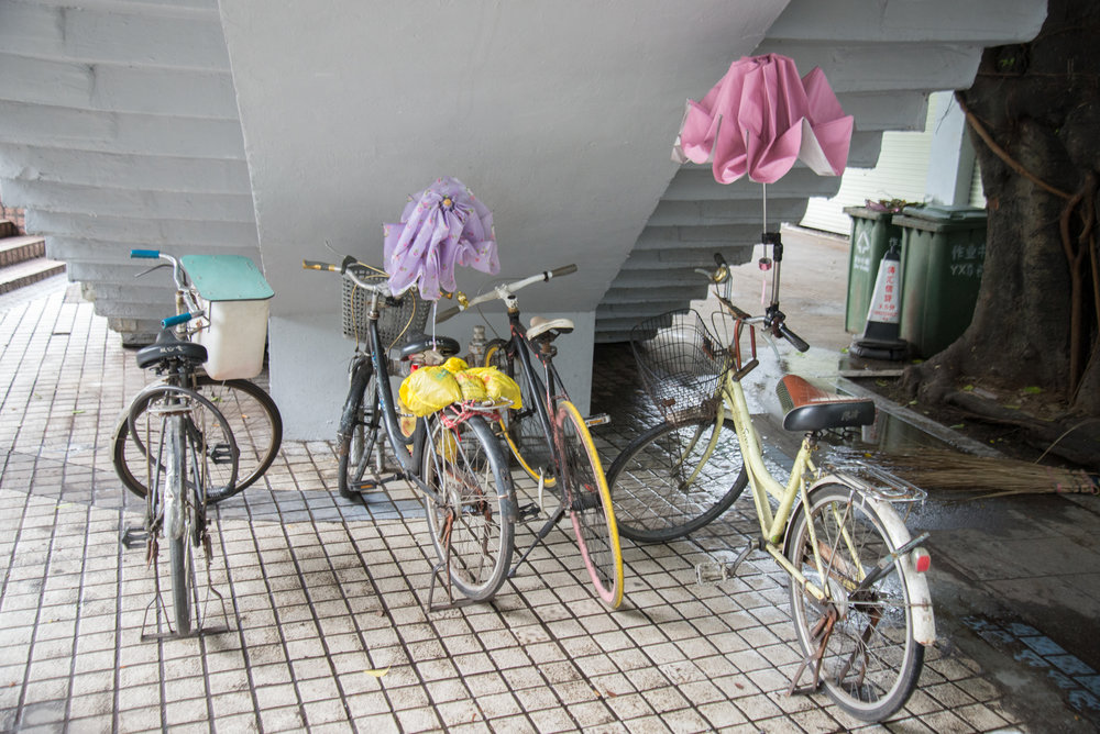 Bicycles w/Umbrellas