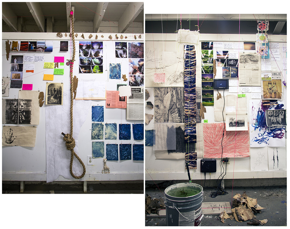 """Untitled (Durational Site Mapping, 42.2097 x 79.4669)"" 2015 Approx. 12 FT x 24 FT x 5 FT Installation (Drawing, Video, Found Materials, Photographs, Cyanotypes, Artist Made Paper, Nylon Line, Notes to Self, Hand Tied Noose, Lake Water, Ghost Hunting Equipment)  This installation is a 4D experimental mapping of my interactions with a geographic site over a 7 week period. I explore relationships between information, material and site to tell a whole story of connection and experience, mining the psychic and physical histories."