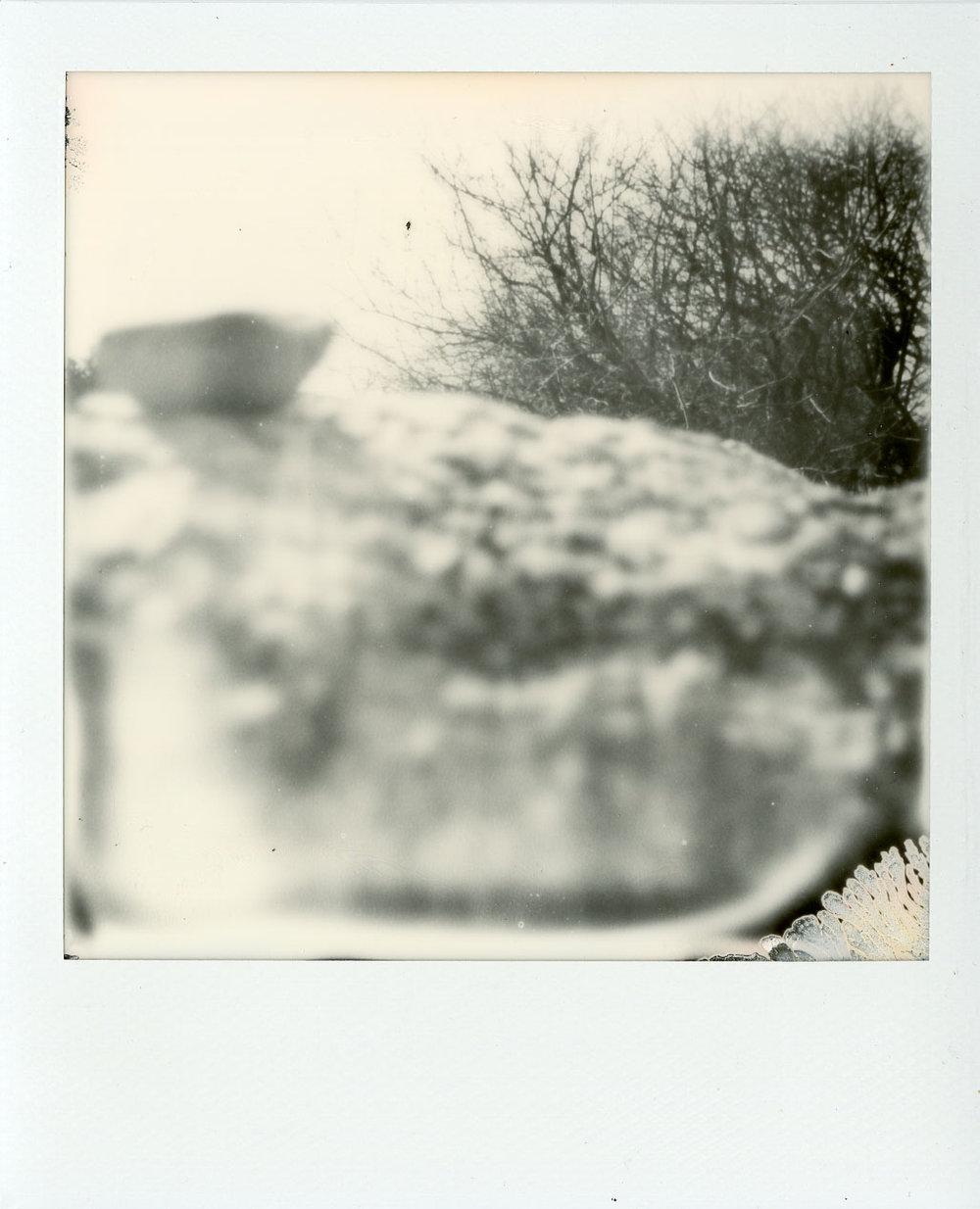 Darkroom-Polaroids017.jpg