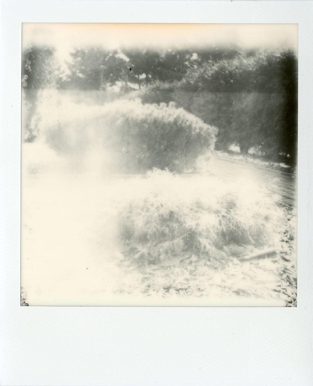 Darkroom-Polaroids018.jpg