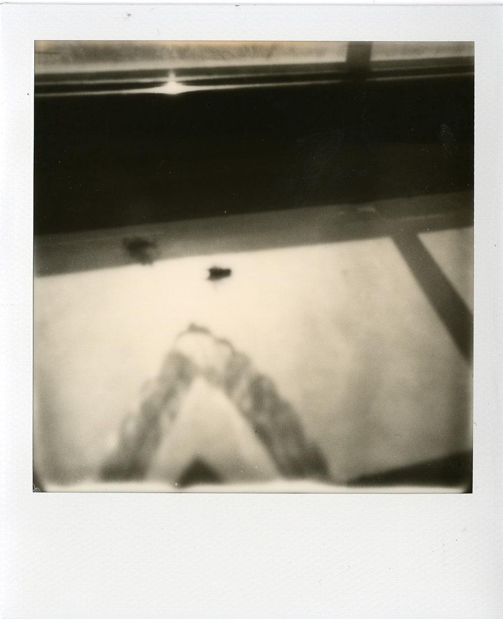 Polaroids028.jpg