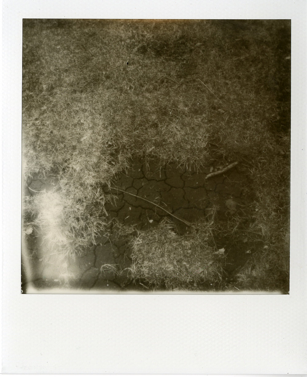Polaroids030.jpg