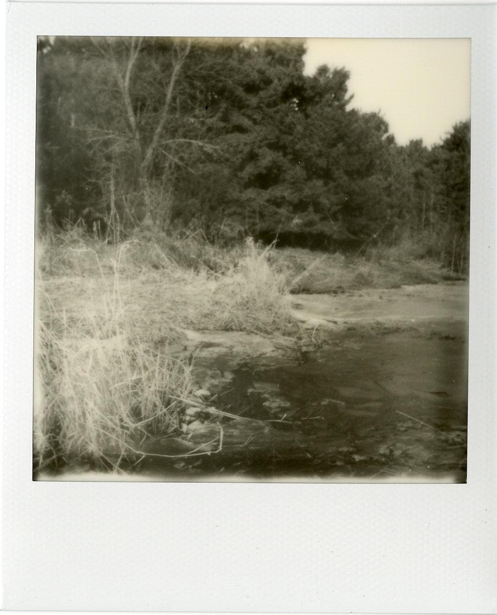 Polaroids034.jpg