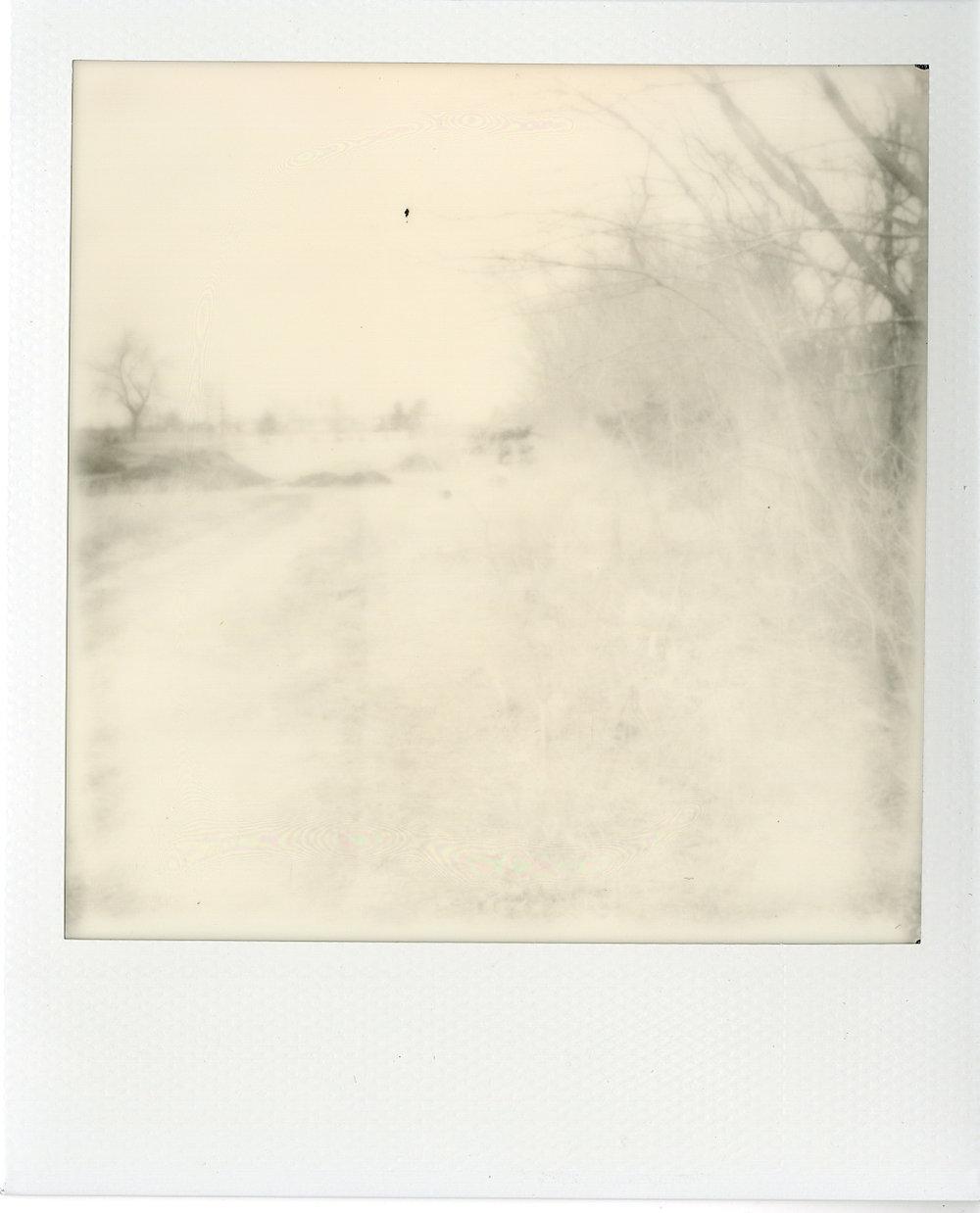 Polaroids035.jpg