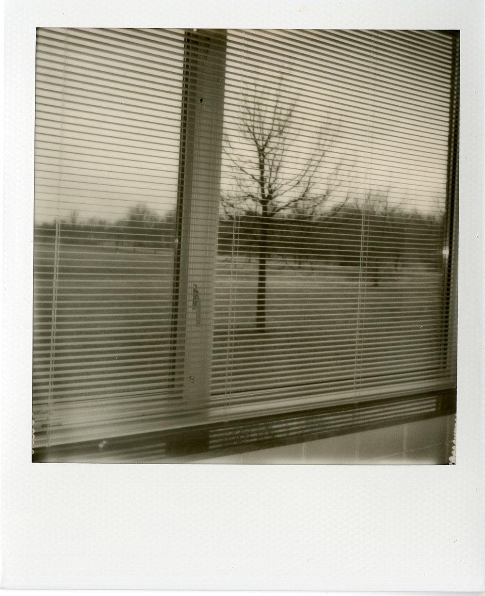 Polaroids043.jpg