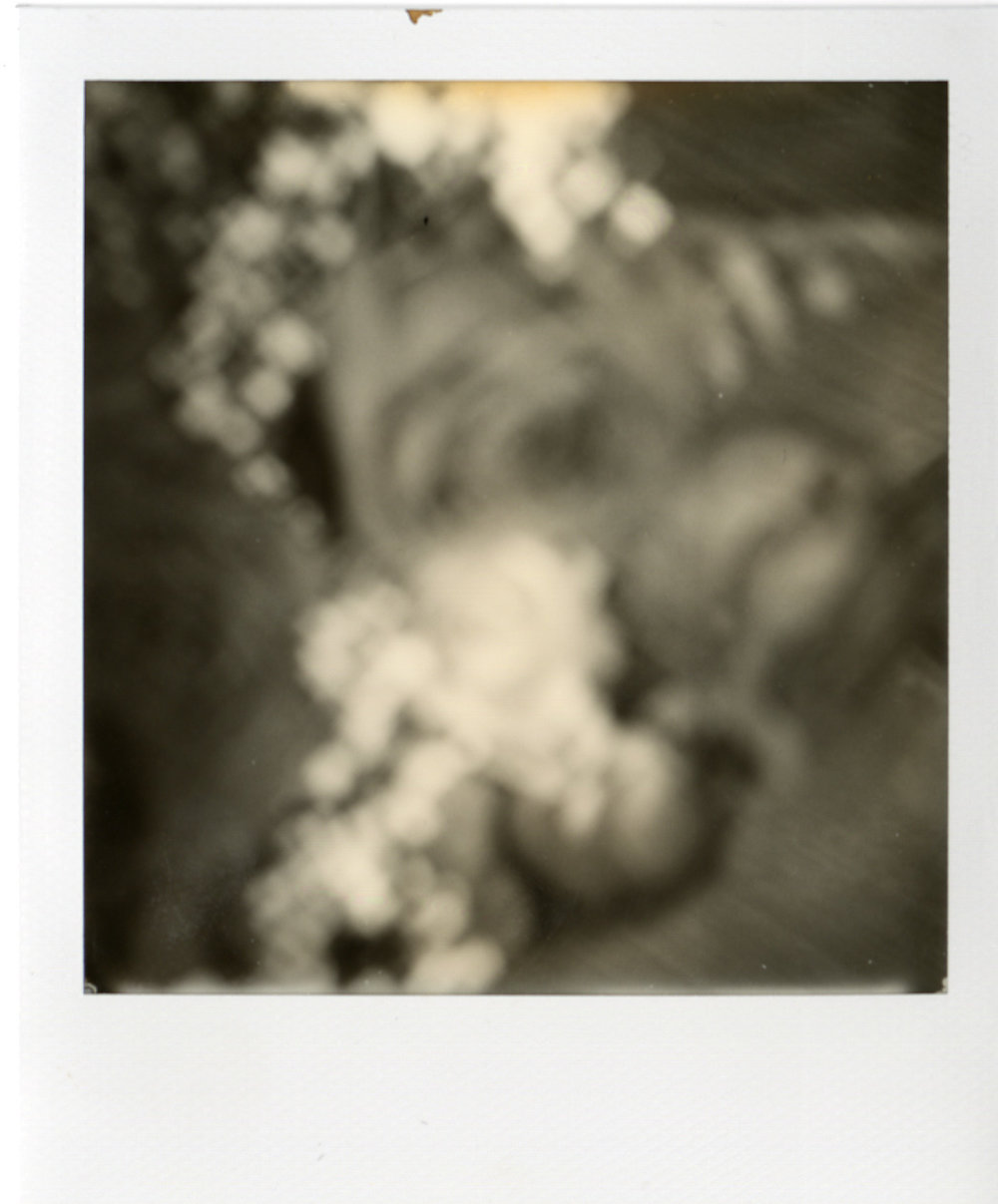 Polaroid049.jpg