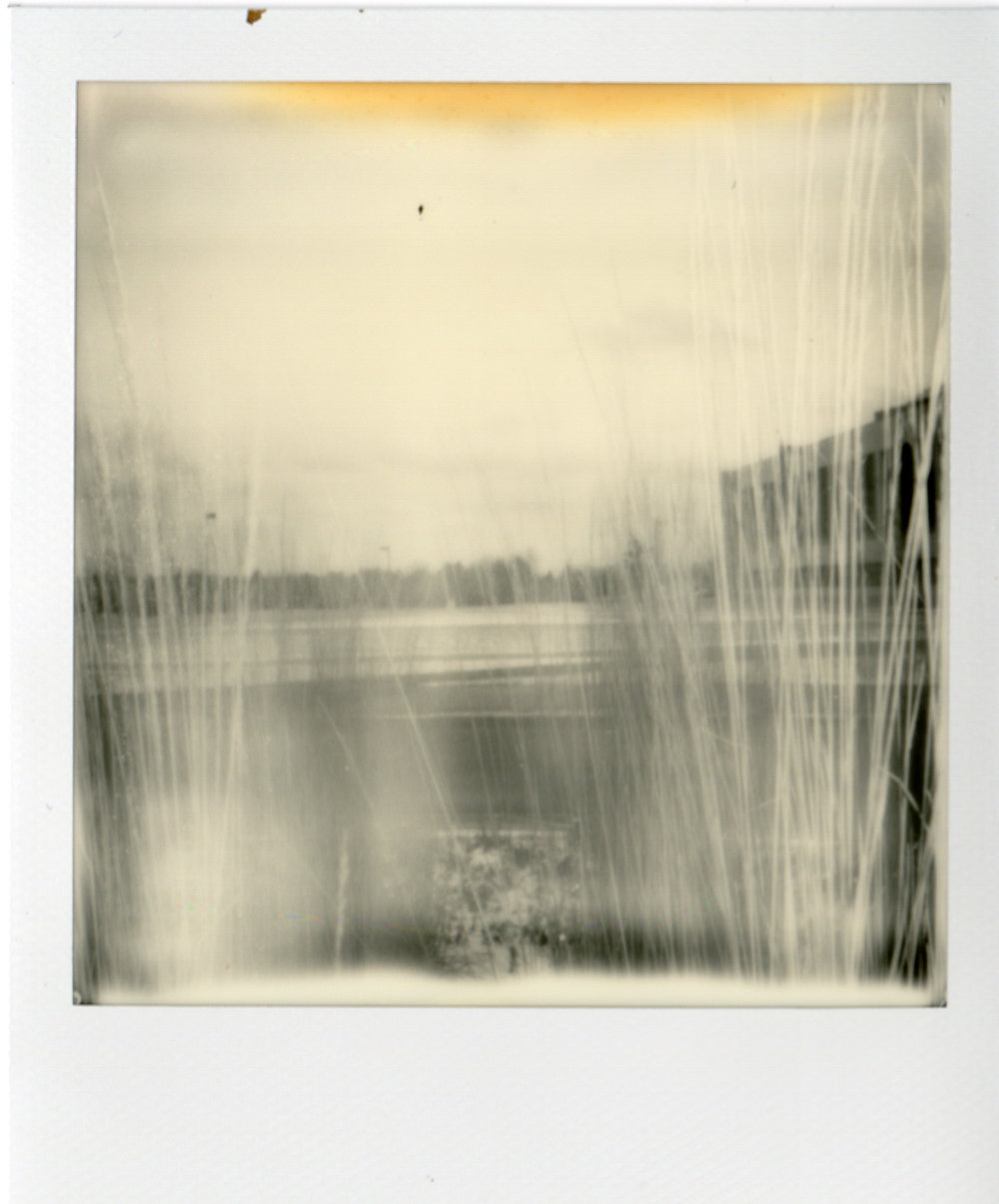 Polaroid051.jpg