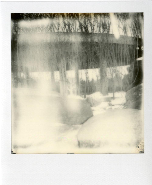 Polaroid054.jpg