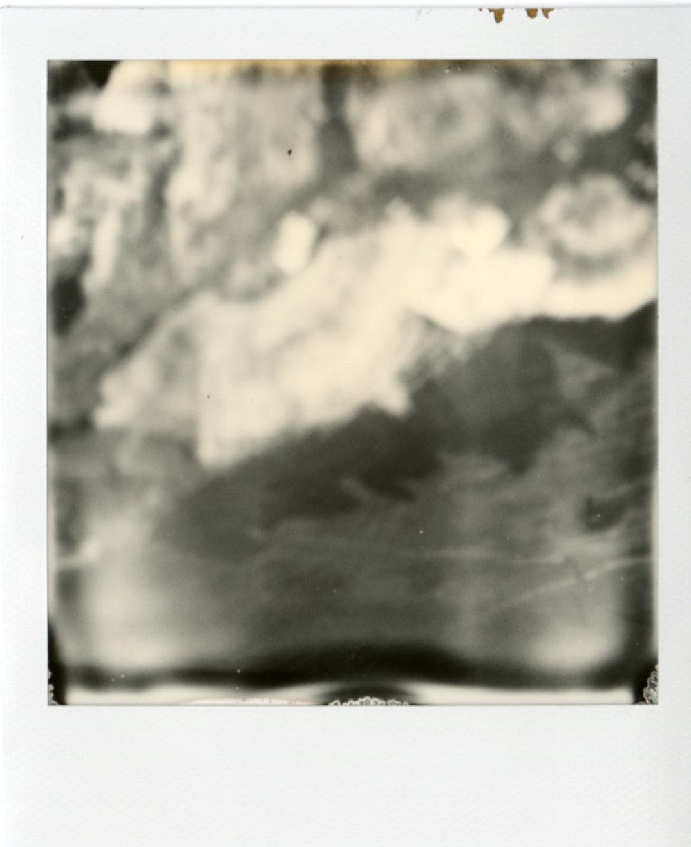 Polaroid060.jpg