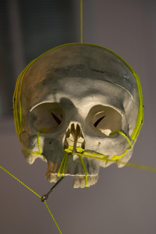 skull_hanging_web.jpg