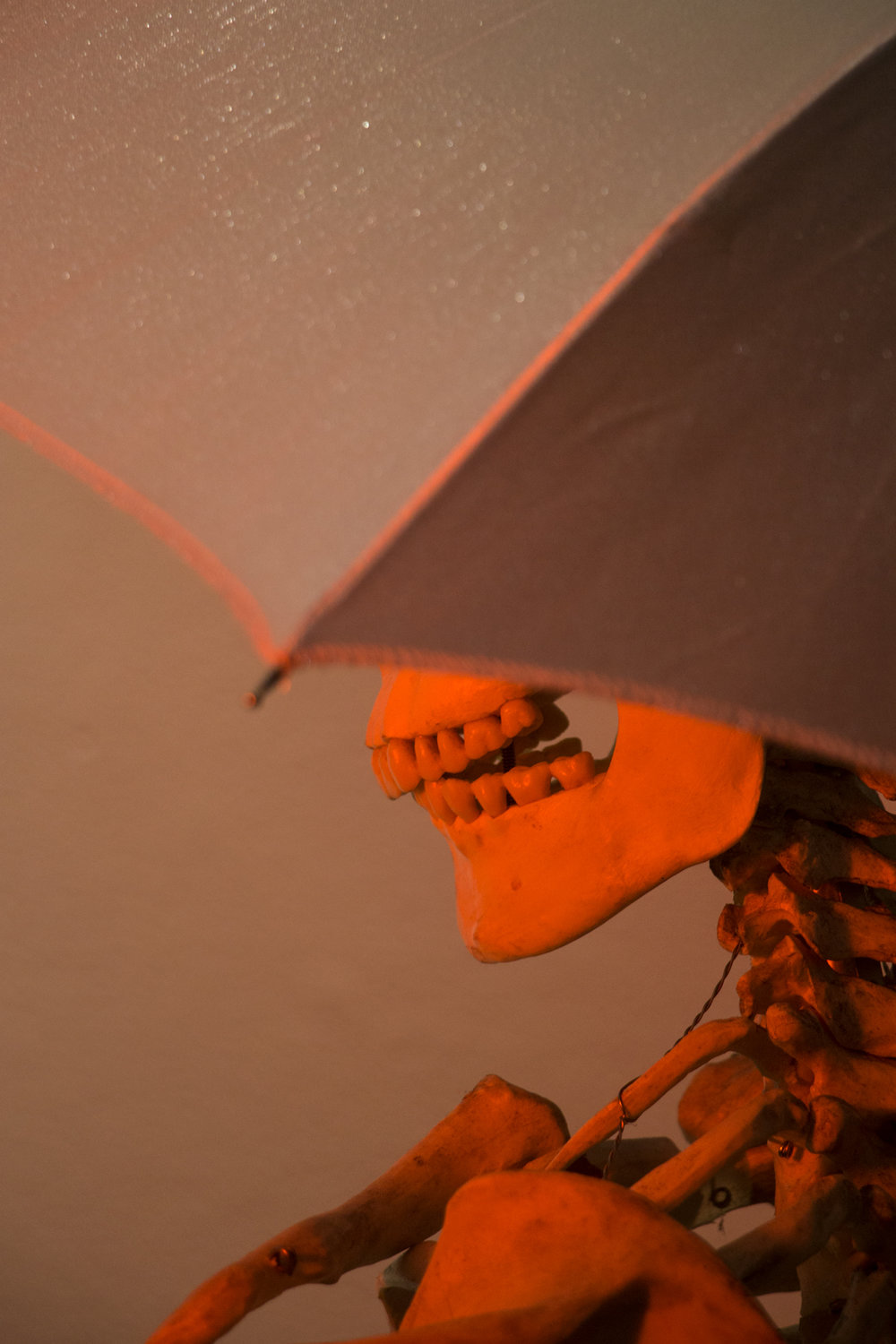 skull_umbrella_web.jpg