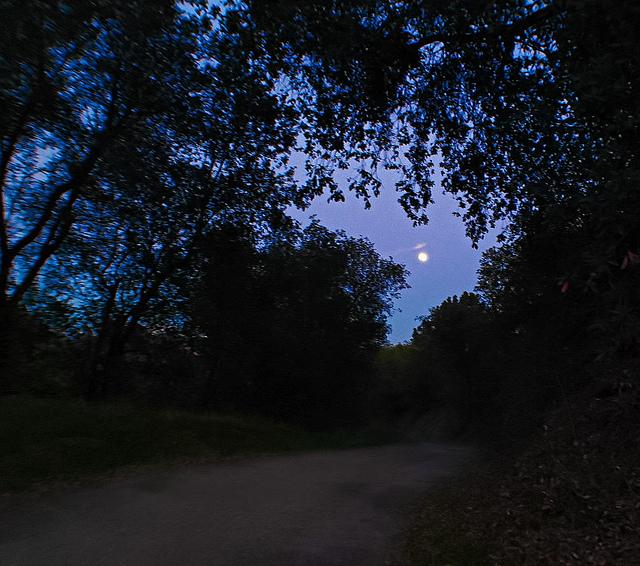 night hiking...