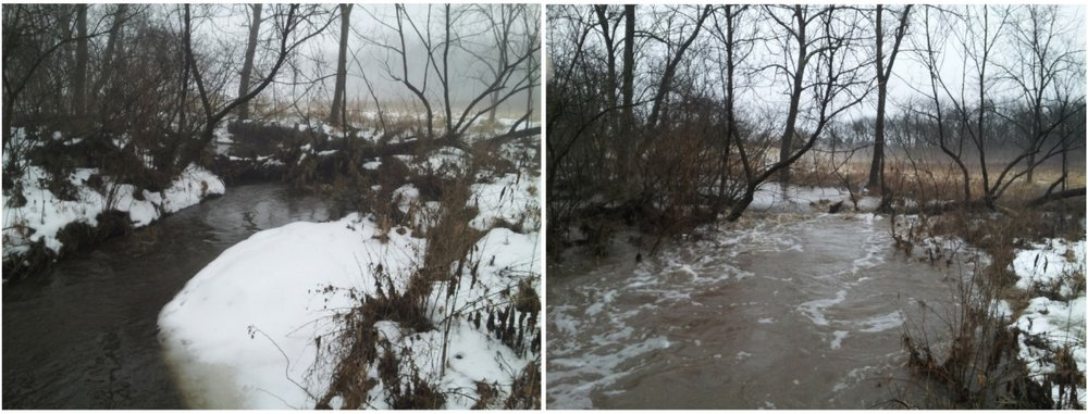 Left:  Hall Creek begins to rise, February 19, 2018. Right:  Hall Creek in flood, February 20, 2018.