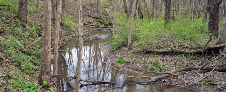 Kinnikinnick Creek flowing through Burr Oak Valley Preserve