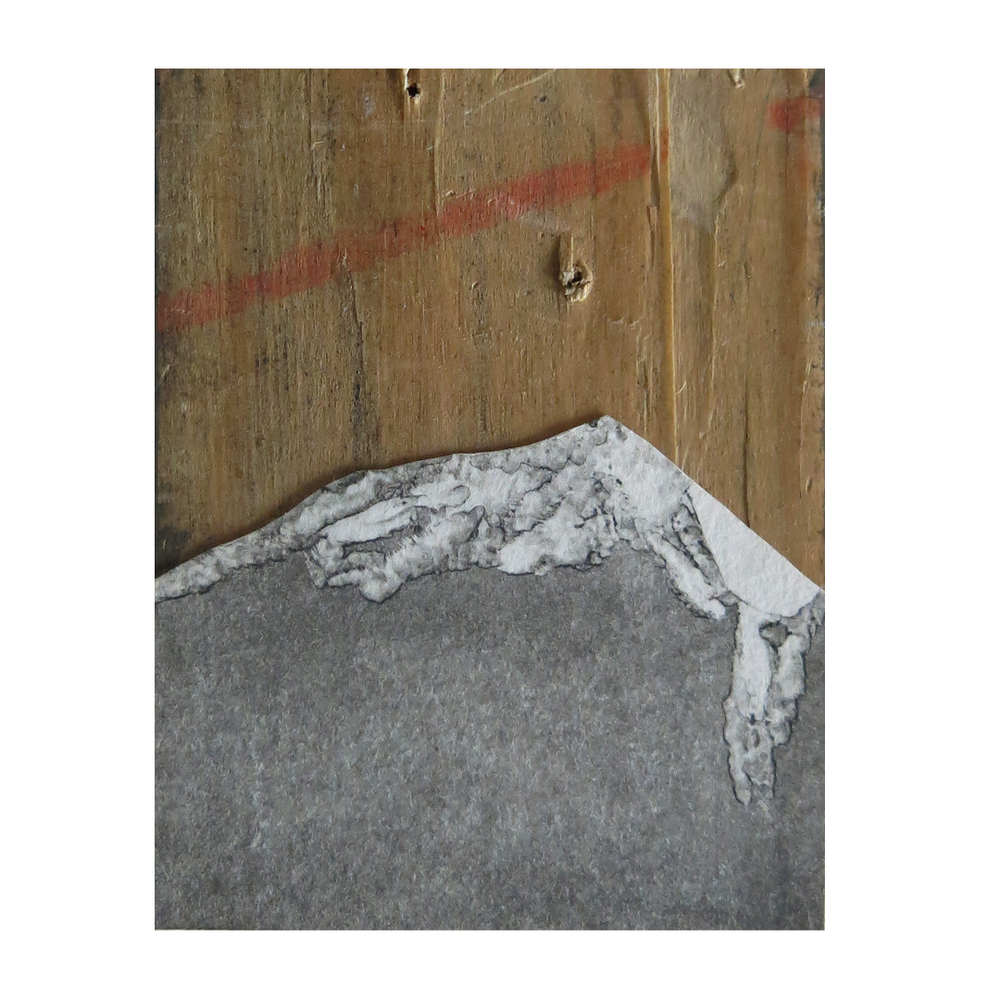 Monotype on wood, Dimensions variable, 2014