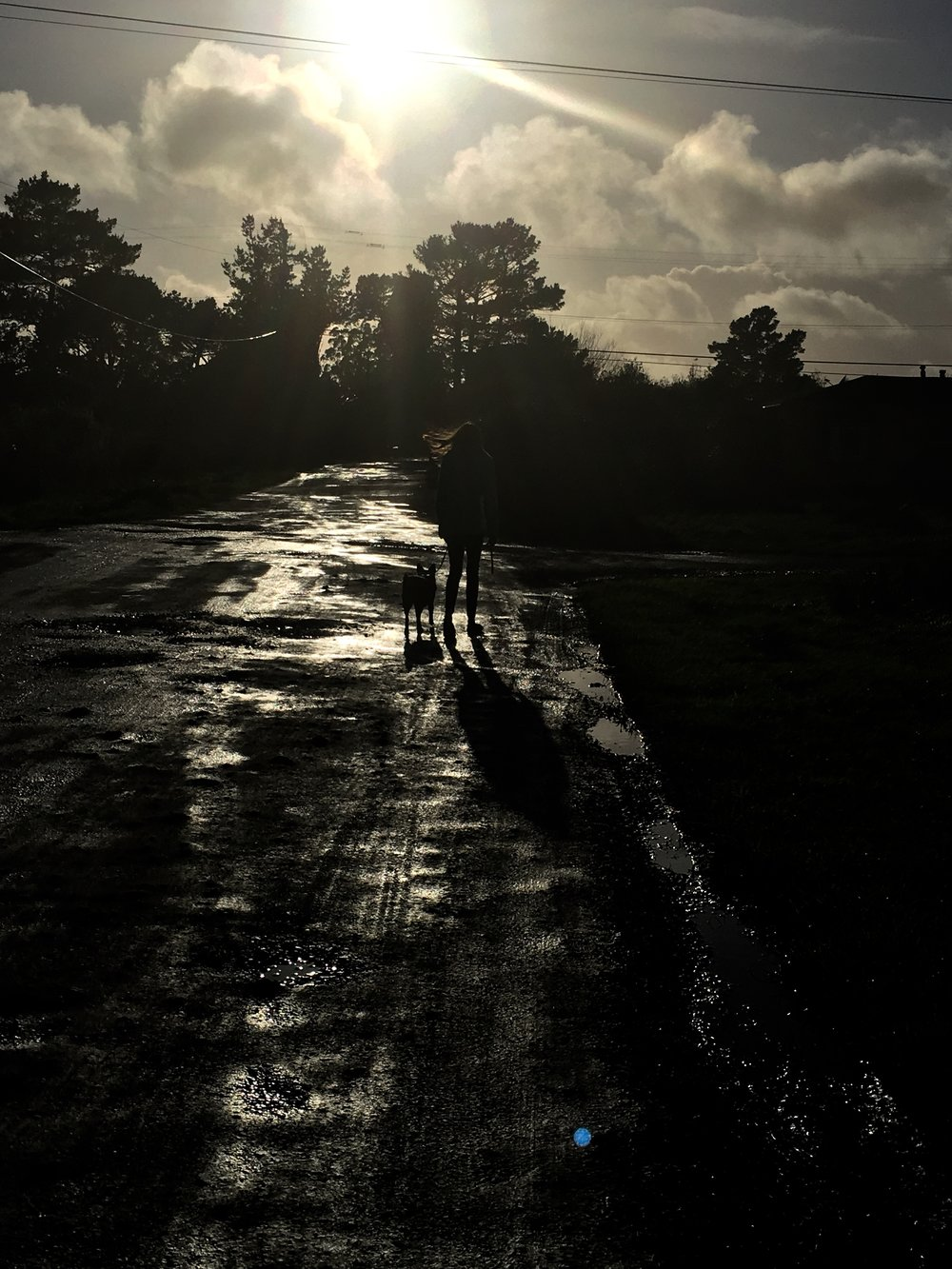 "In this shot, Clare walks her dog on a wet street.  This image is silkscreened onto  Will You Still Take Good Care of Me , the new 7"" from Peggy Honeywell.  Image provided by the artist."