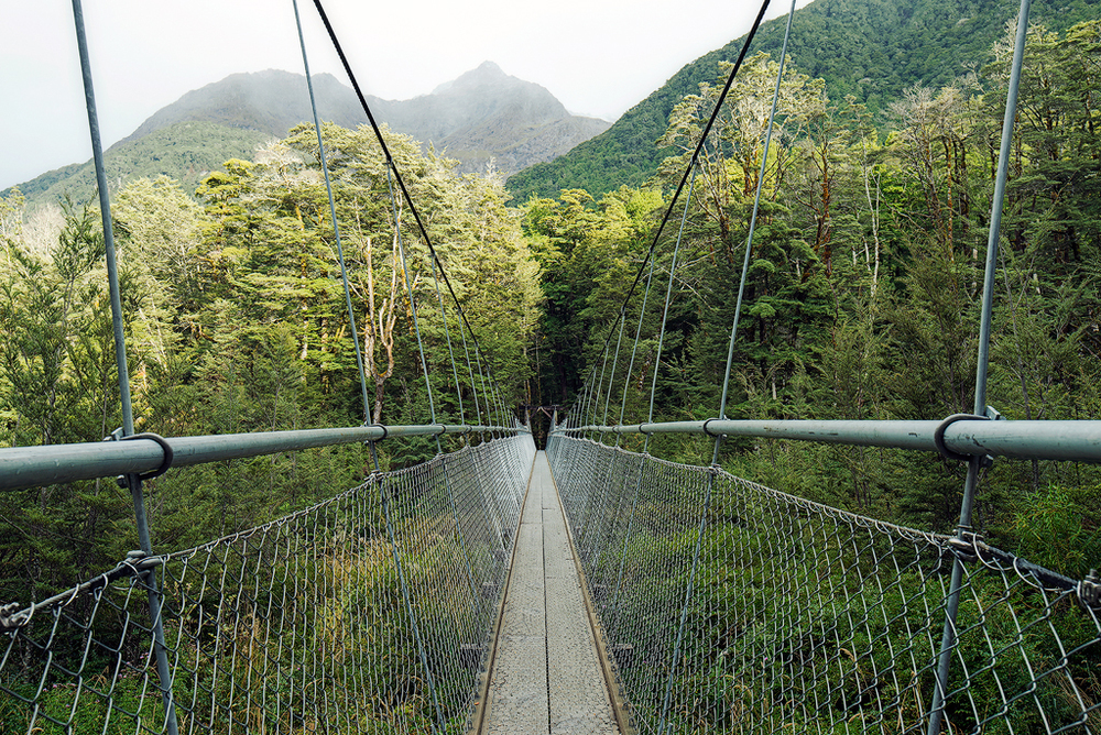 Routeburn Bridge.jpg