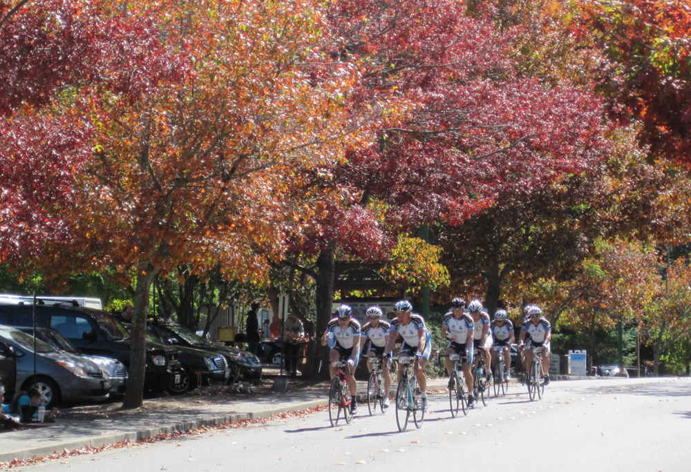 levi's gran fondo riders, occidental